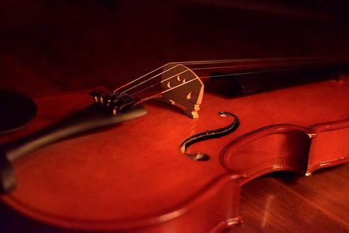 バイオリン 横山 玲奈 横山令奈の年齢+出身高校は?両親もバイオリン一家